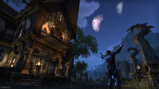 File:Khajiit Two Moons ESO.jpg