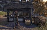 Guild Store (Trade Legion)