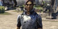 Watchman Heldil