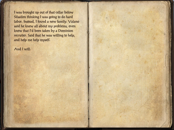 Pages 7
