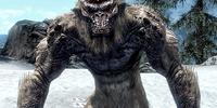 Frost Troll (Skyrim)