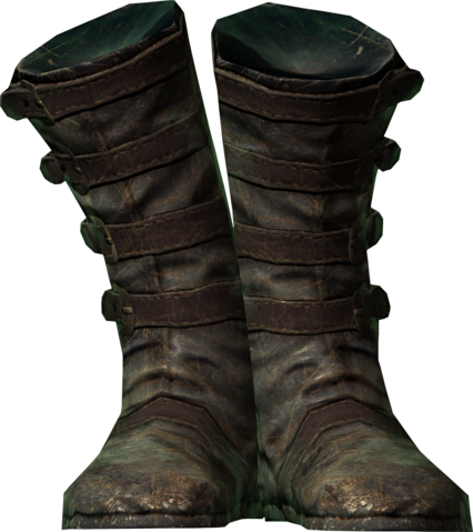 File:Linwes boots.png