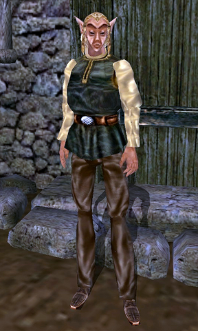 File:TESIII Fargoth.png