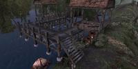 Puddlejump Camp