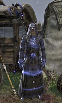 Arch-Mage Shalidor