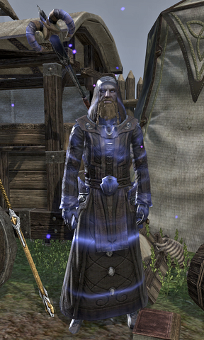 File:Arch-Mage Shalidor.png