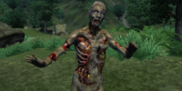 ZombieCombatTest