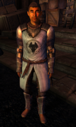 TESIV Guard Kvatch 1