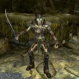 Draugr Death Overlord