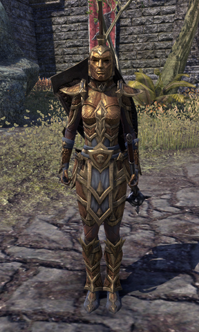 File:Ordinator Guard.png