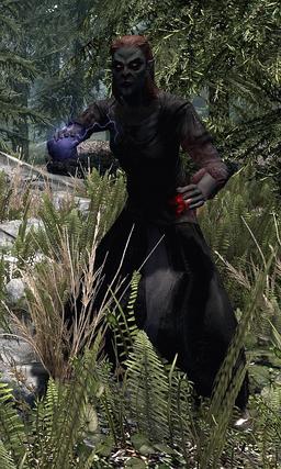 Volkihar Vampire