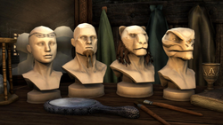 Cosmetic Pack Adornments