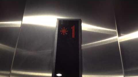 Kone EcoSpace Traction Elevator at Sanctuary Exploration Center in Santa Cruz, CA