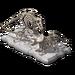 Dinosaur Skeleton Statue