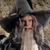 EL as Gandalf Grey
