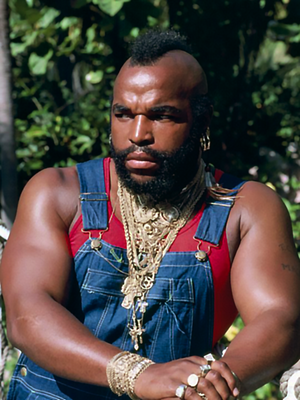 Mr. T Based On