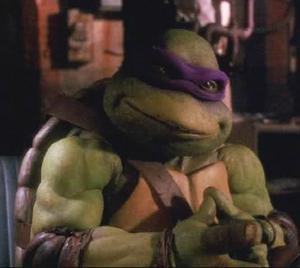Donatello (Turtle) Based On