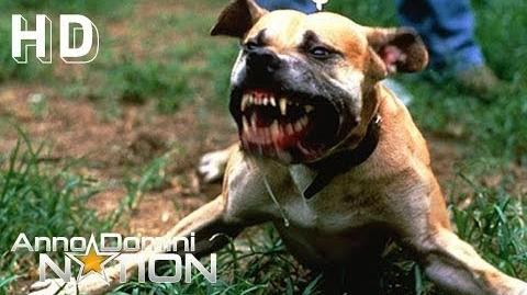 """Rap Rock Beat with Electric Guitar """"The Dog"""" - Anno Domini Beats-2"""