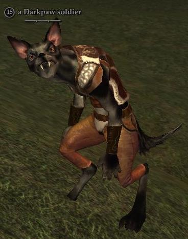 File:A Darkpaw soldier.jpg