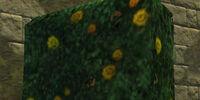 Yellow Rose Topiary