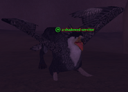 A shadowed servitor (griffin)