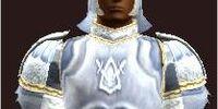 T9 Leather Healer - Easy (Armor Set)