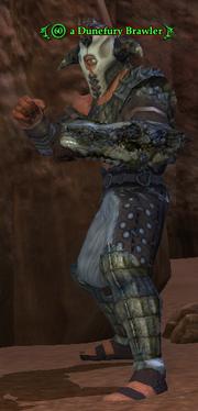 A Dunefury Brawler