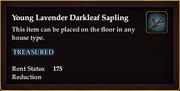 Young Lavender Darkleaf Sapling