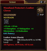 Woodland Protector's Leather Gloves