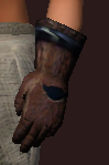 Ascendant's Hand Wraps of Stability (Equipped)
