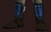 Frostwind Champion's Boots (Equipped)
