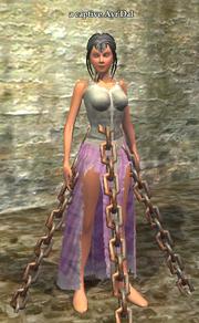 A captive Ayr'Dal