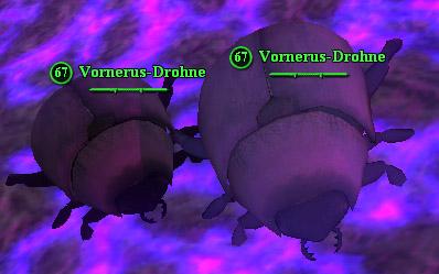 File:Vornerus drone.jpg