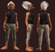 Animist's Hauberk of the Citadel (Equipped)
