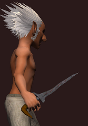 Forged Dagger (Equipped)
