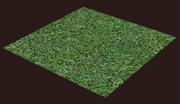 Green Field Square