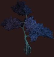 Indigo Vesspyr Willow (Placed)