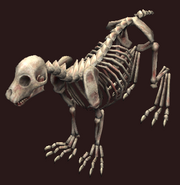Skeletal prowler (Visible)