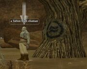 A Tallon high shaman