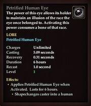 Petrified Human Eye