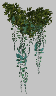 Zavith'loa Hanging Shrub (Visible)