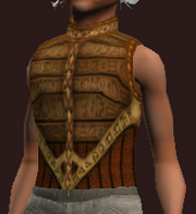 Elysian Hauberk of the Forest Stalker (Equipped)