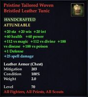 Pristine Tailored Woven Bristled Leather Tunic