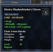Novice Shadowbinder's Gloves