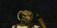 A Scaleborn magus
