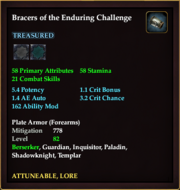 Bracers of the Enduring Challenge