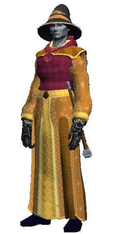 File:Arcane officer robe (Visible).jpg