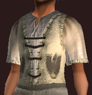 Male tradesman tunic (Equipped)