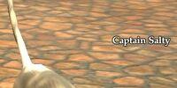 Captain Salty