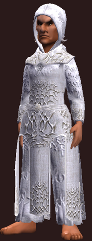 Sage's Gemmed Robe (Equipped)